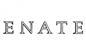 Logo-ENATE_800x1392-300x195