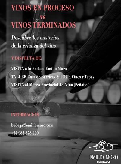 vinos en proceso vs vinos terminados